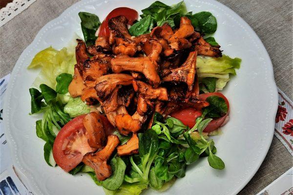 Eierschwammerl geröstet auf Salat